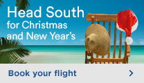 South flights - Christmas