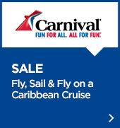 Carnival promo